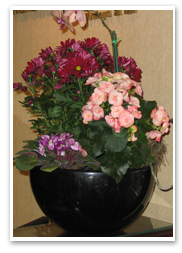 A Large Flowering Bowl